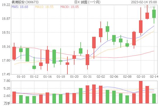 佩蒂股份300673股票最新价格